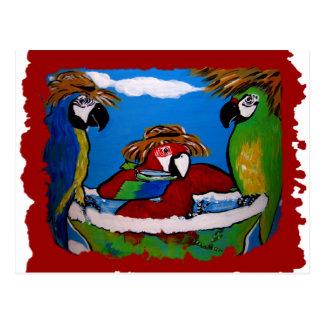 Carte Postale Les acclamations du perroquet de partie
