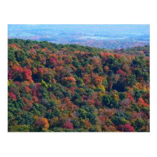 Carte Postale Les Appalaches dans la photographie de nature