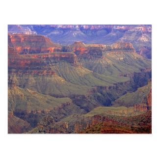 Carte Postale Les Etats-Unis, Arizona, ressortissant de canyon