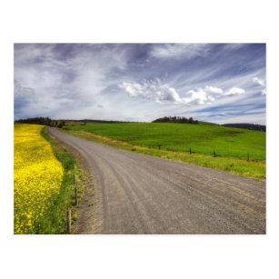 Carte Postale Les Etats-Unis, Idaho, le comté d'Idaho, champ de