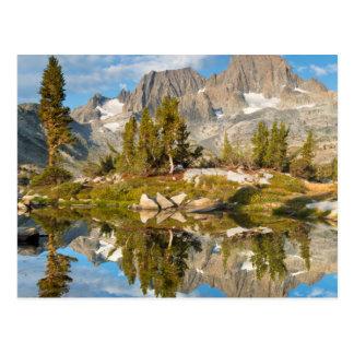 Carte Postale Les Etats-Unis, la Californie, réserve forestière
