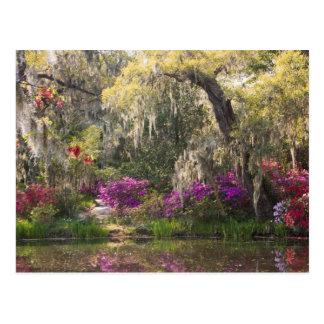 Carte Postale Les Etats-Unis, la Caroline du Sud, Charleston.