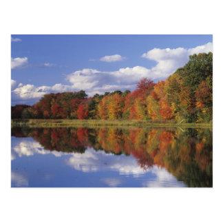 Carte Postale Les Etats-Unis, le Massachusetts, Acton. Réflexion