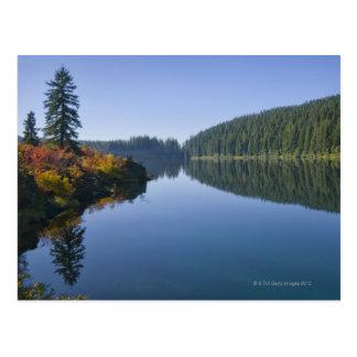 Carte Postale Les Etats-Unis, Orégon, lac clair