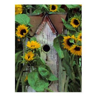 Carte Postale Les Etats-Unis, Pennsylvanie. Volière et jardin