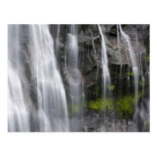 Carte Postale Les Etats-Unis, WA, le mont Rainier NP, automnes
