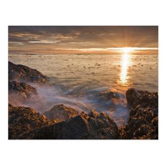 Carte Postale Les Etats-Unis, Washington, îles de San Juan.  Un