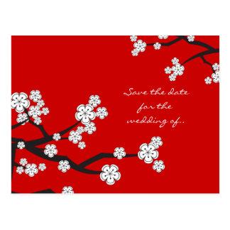 Carte Postale Les fleurs de cerisier blanches de Sakura sauvent
