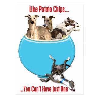 Carte Postale Les lévriers aiment des pommes chips