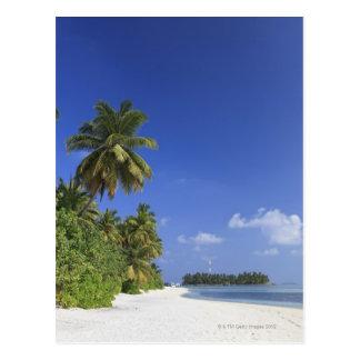 Carte Postale Les Maldives, atoll de Meemu, île de Medhufushi