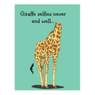 Carte Postale Les selfies de girafe ne finissent bien jamais…
