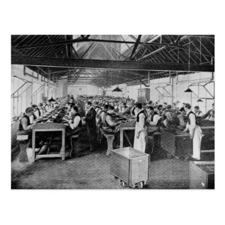 Carte Postale Les services de fabrication de cigare