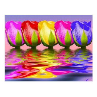 Carte Postale les tulpen dans l'eau