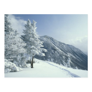 Carte Postale Les USA, NH, neige ont couvert des traînées