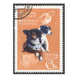 Carte Postale L'espace russe poursuit le cosmos 1966 110