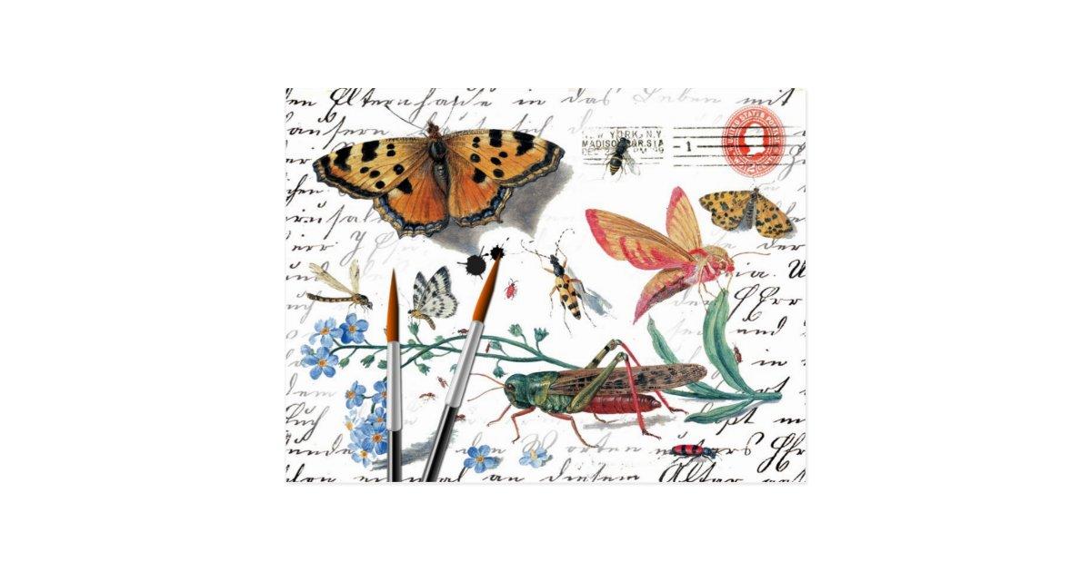 Carte Postale Lettre vintage et cachet de la poste d'insecte | Zazzle.fr