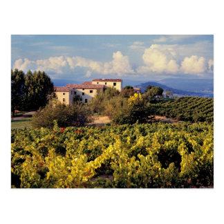 Carte Postale L'Europe, France, Bonnieux. Les vignobles couvrent