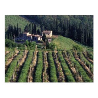Carte Postale L'Europe, Italie, Toscane. Villa pittoresque