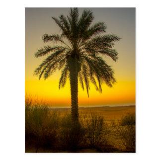 Carte Postale Lever de soleil de palmier