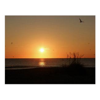 Carte Postale Lever de soleil de plage