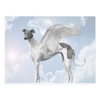 Carte Postale Lévrier blanc d'ange