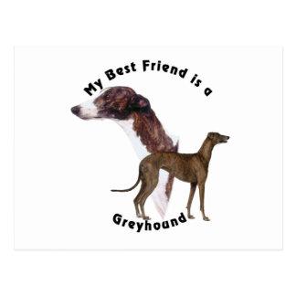 Carte Postale Lévrier de meilleur ami