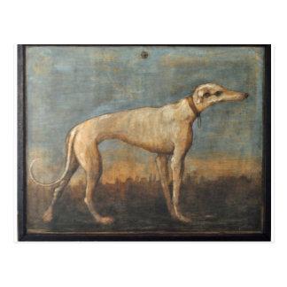 Carte Postale Lévrier par Giovanni Domenico Tiepolo