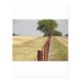 Carte Postale Ligne de barrière du Texas