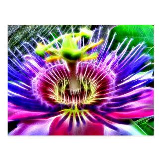 Carte Postale Lilikoi ou fleur de passion