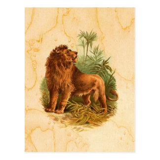 Carte Postale Lion et palmiers vintages