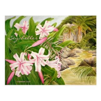Carte Postale Lis des Seychelles