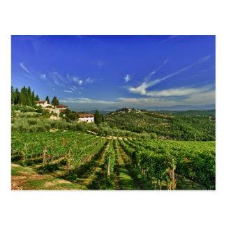 Carte Postale L'Italie, Toscane, Greve. Les vignobles de
