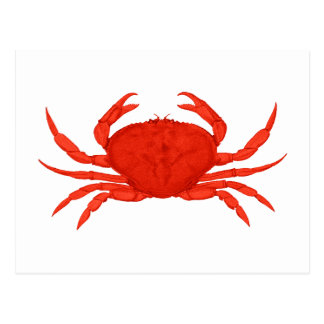 Carte Postale Logo rouge de crabe de Dungeness