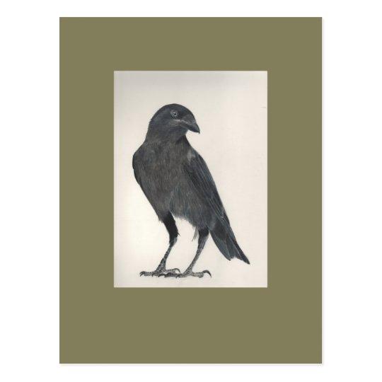 Carte Postale L'oiseau fier