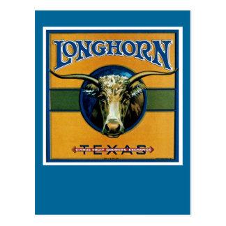 Carte Postale Longhorn le Texas