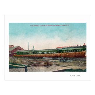 Carte Postale Longues voies ferrées d'ouverture d'arbre