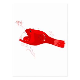 Carte Postale Lotte de mer