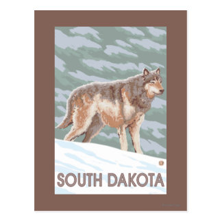 Carte Postale Loup gris StandingSouth Dakota