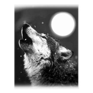 Carte Postale Loup hurlant à la lune