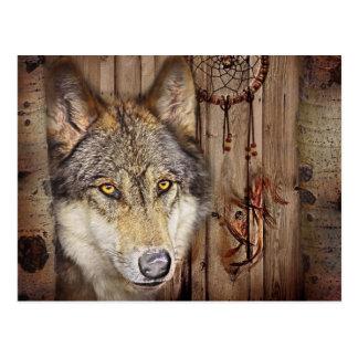 Carte Postale Loup indien indigène de receveur rêveur occidental