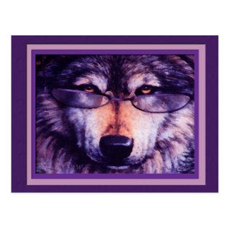 Carte Postale Loup pourpre solitaire