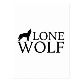 Carte Postale Loup solitaire