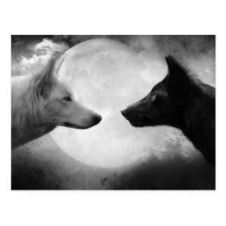 Carte Postale Loups