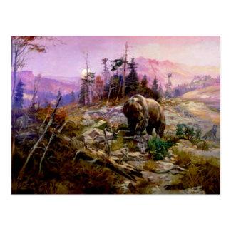 Carte Postale L'ours gris