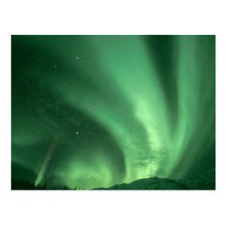Carte Postale Lumières du nord, borealis de l'aurore, au-dessus