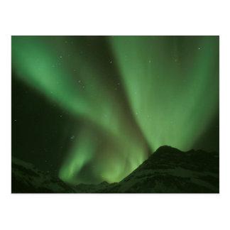 Carte Postale Lumières du nord, borealis de l'aurore sur des