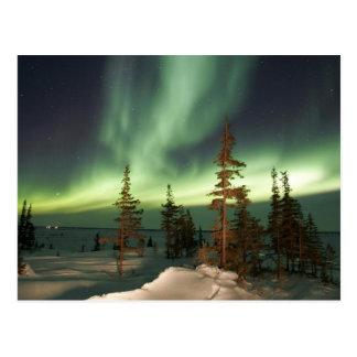 Carte Postale Lumières du nord Canada