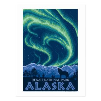 Carte Postale Lumières du nord - parc national de Denali, Alaska