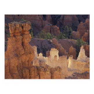 Carte Postale L'Utah, parc national de canyon de Bryce.