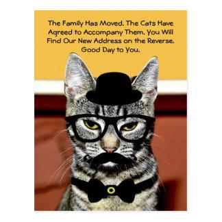 Carte Postale M. Cat Announces Move avec la nouvelle adresse